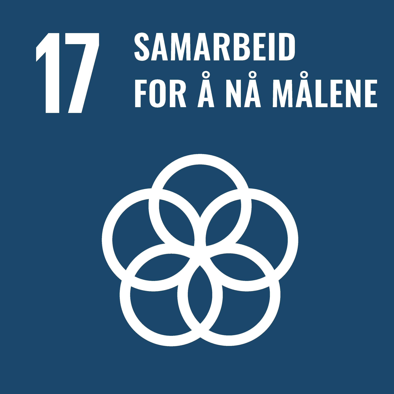 bærekraftsmål nummer 17