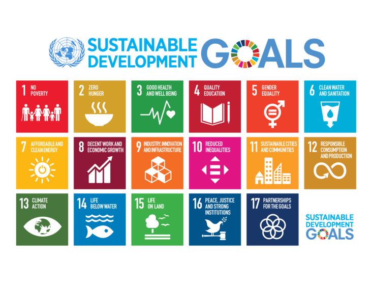 UN SDG illustration